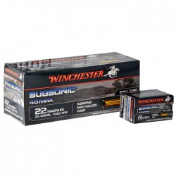 .22 lr Winchester Subsonic HP 2.7 g / 42gr